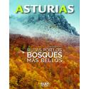Asturias. Rutas por los bosques más bellos