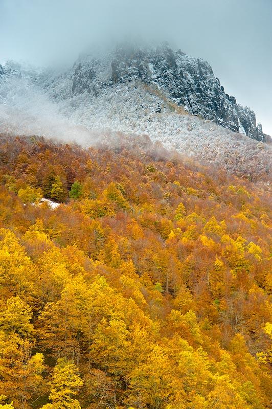 Primeras nieves en el bosque de Saperu. Parque Natural de Redes. Asturias