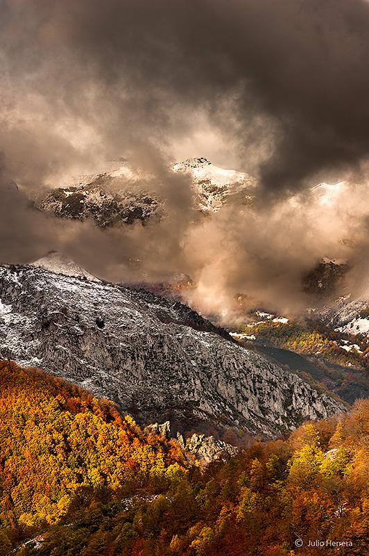 Hayedo en otoño. Parque Natural de Redes Asturias
