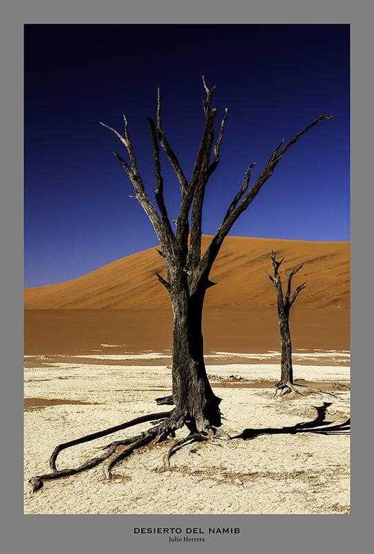 Duna del desierto de Namib. Namibia.