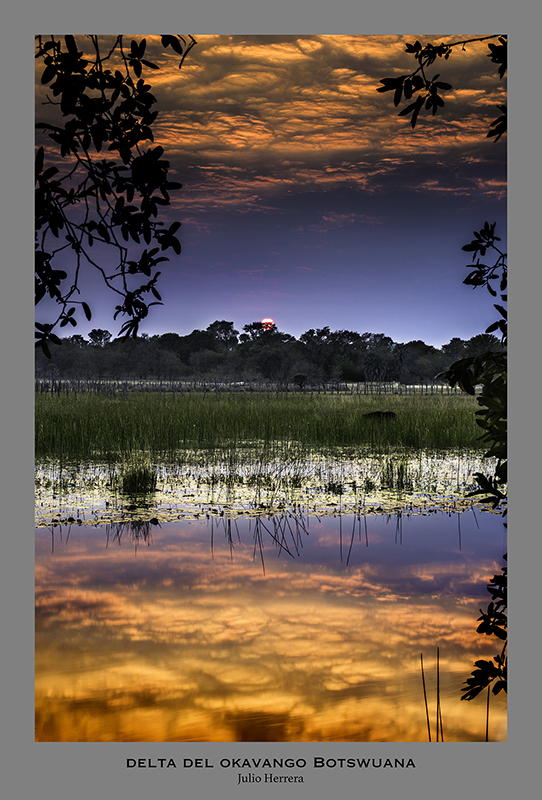 Atardecer en el Delta del Okavango. Botswuana