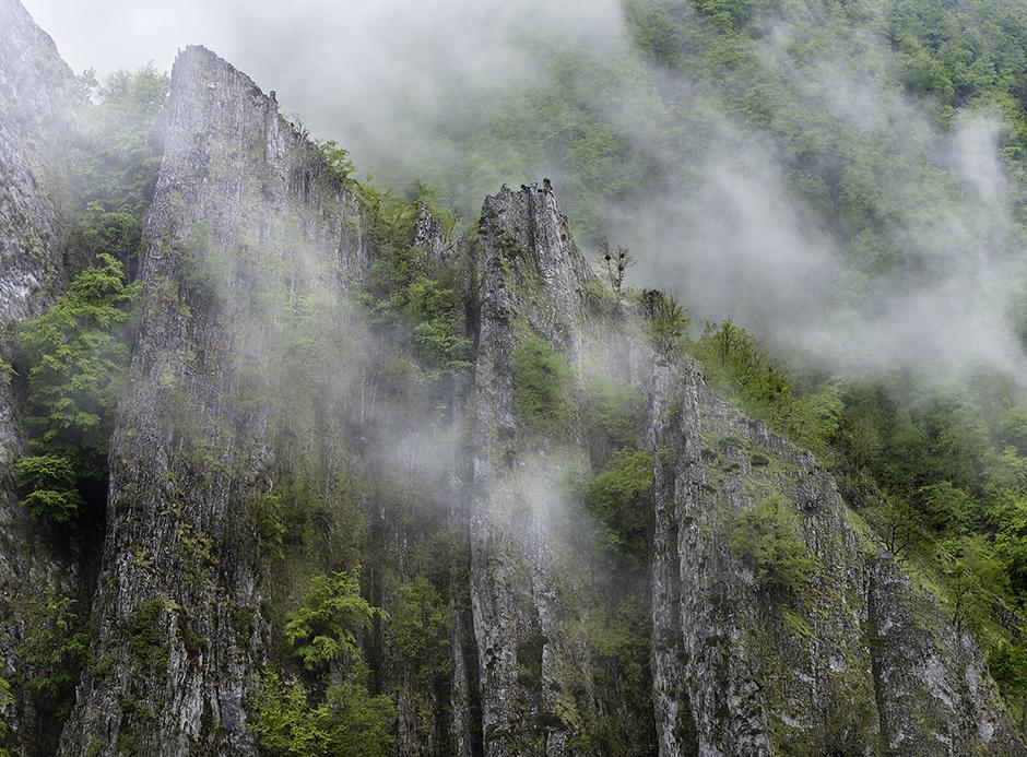 Bosque de Vegabaxu, Parque natural de Redes.
