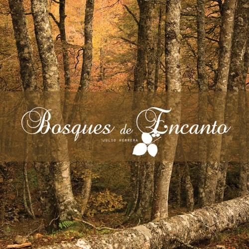 Un viaje por los bosques de Asturias a través de las cuatro estaciones del año. En esta obra descubriremos los distintos tipos de bosques que se encuentran en Asturias, así como una descripción pormenorizada de algunos de los mas impresionantes, ya sea por su tamaño, estado de conservación o rareza, todo ello acompañado por sugerentes imágenes tomadas a lo largo de las etapas de la vida estacional del bosque.