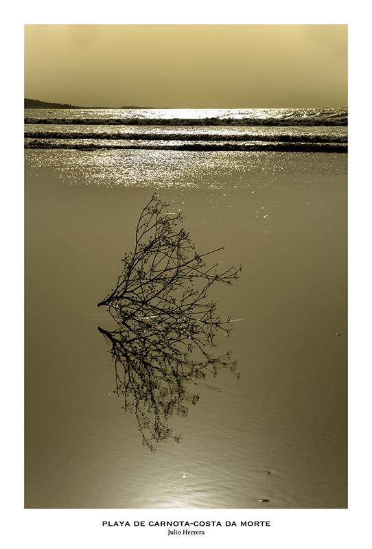 Atardecer en la playa de Carnota. Costa de Morte. A Coruña.