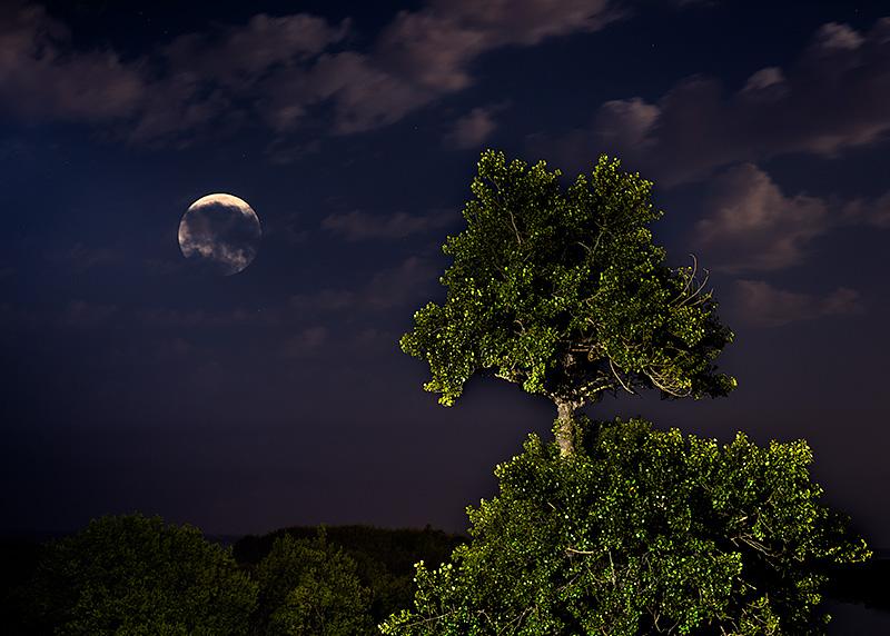 Luna llena de verano.