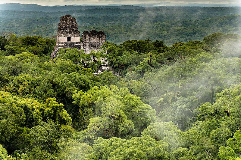Selva del Peten, Guatemala